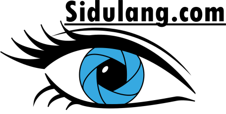 logo sidulang